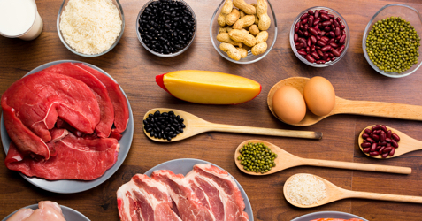 Sources of protein – ProForm