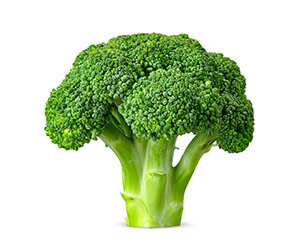 Vegetable Broccoli – ProForm Blog