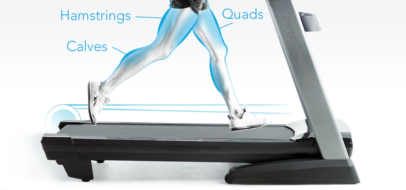 diagram of muscule groups that work when running on a treadmill