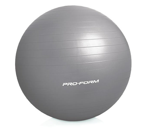 ProForm 55 Cm. Exercise Ball Accessories