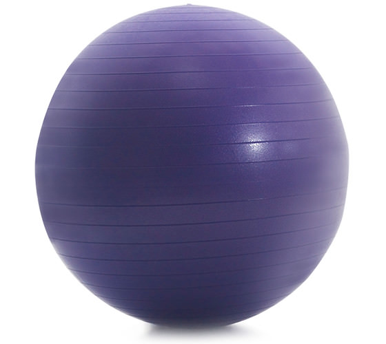 Proform Accessories 55 Cm. Anti-Burst Fitness Ball