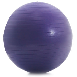 ProForm 55 Cm. Anti-Burst Fitness Ball Accessories